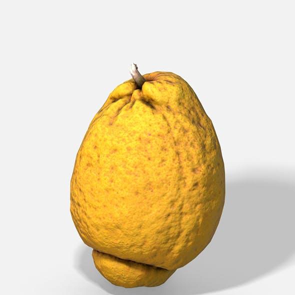 Fruit Citron - Photoscanned PBR