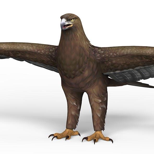 Game Ready Eagle