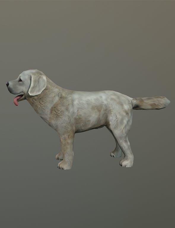 Sheep Dog - 3DOcean Item for Sale