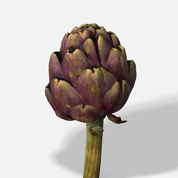 Vegetable Artichoke - Photoscanned PBR