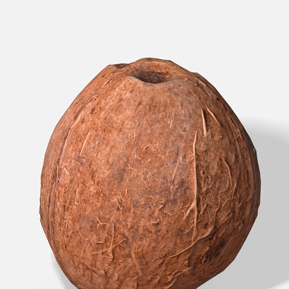 Exotic Fruit Coconut - Photoscanned PBR