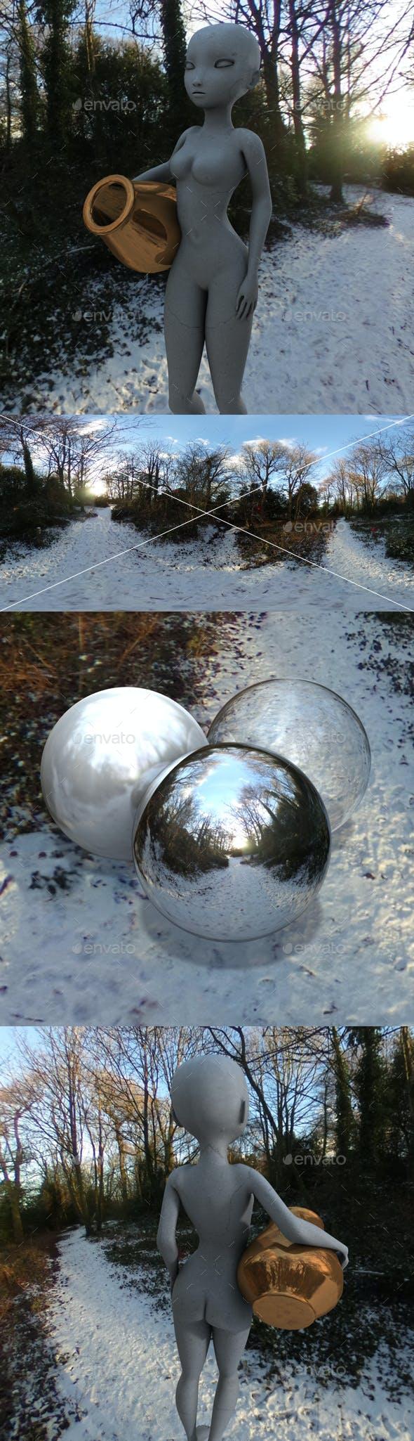 Snowy Woodland Path HDRI - 3DOcean Item for Sale