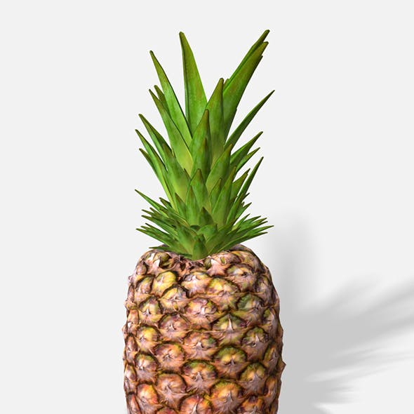 Exotic Fruit Pineapple - Photoscanned PBR