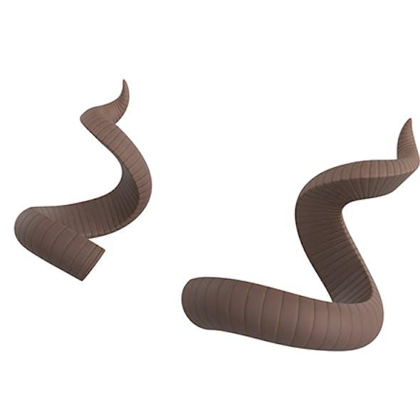 Kudu Horn