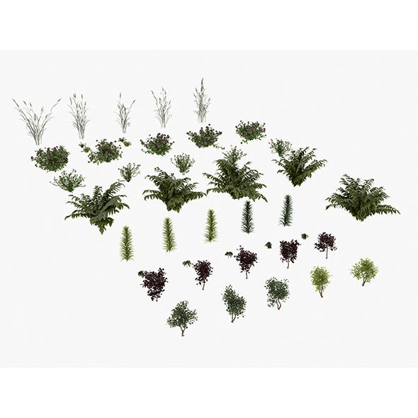Realistic Garden Bushes
