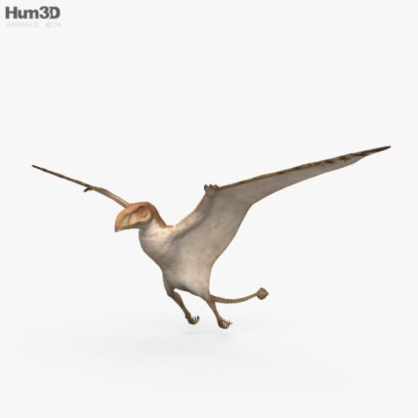 Pteranodon HD