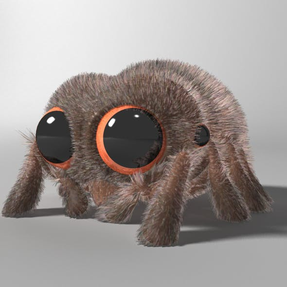 Cartoon Spider Rigged