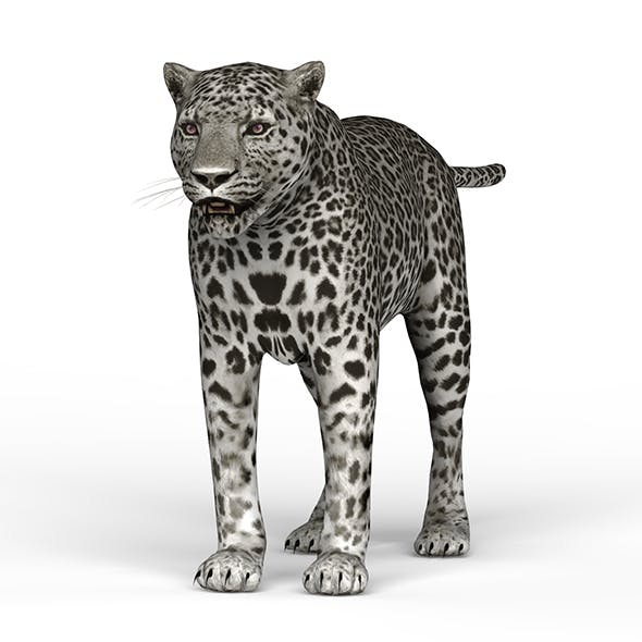 Snow Jaguar