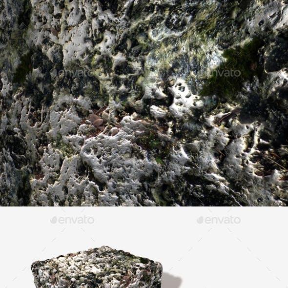 White Volcanic Rock Seamless Texture