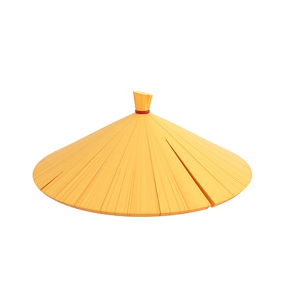 Chinese Conical Hat
