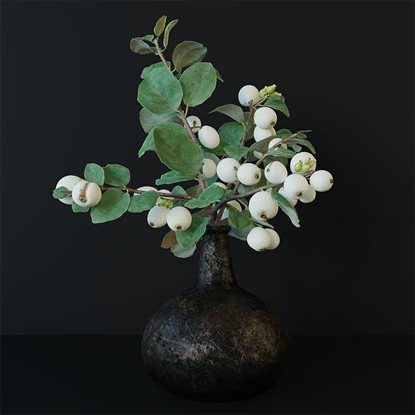 Showberry branch in vase