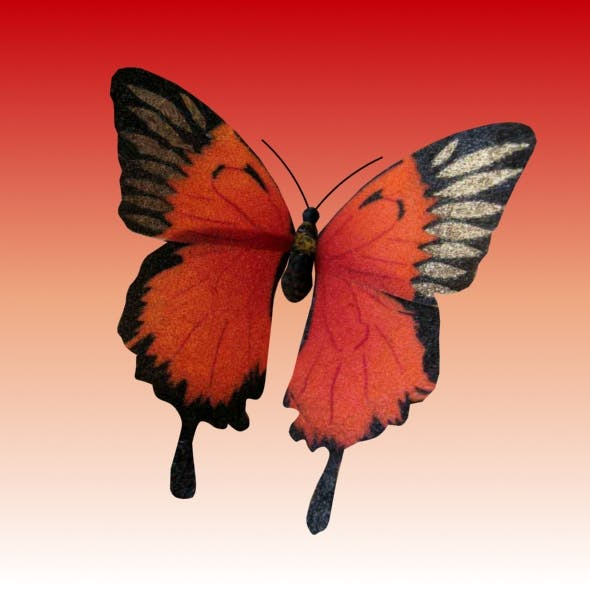 Animated  Butterfly loop - 3DOcean Item for Sale