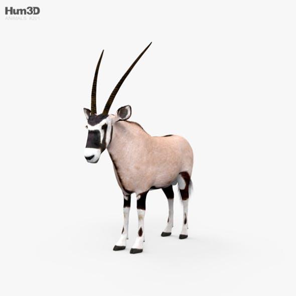 Oryx HD - 3DOcean Item for Sale