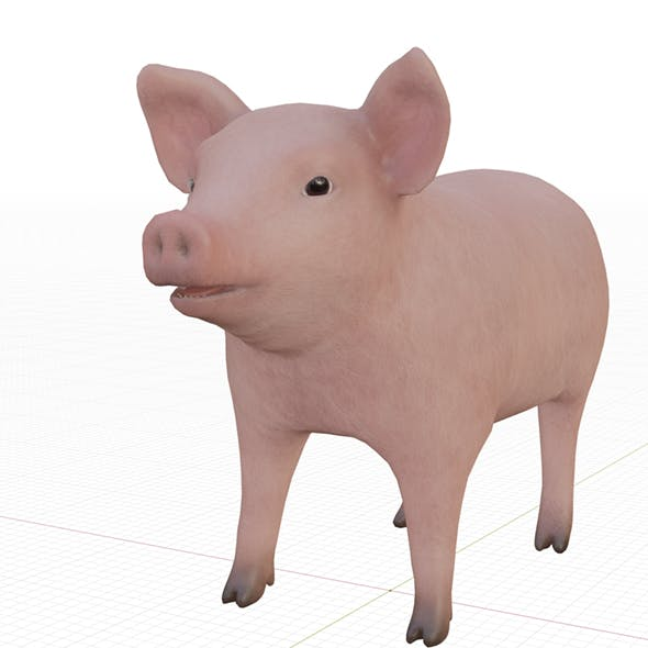 Small pig - 3DOcean Item for Sale