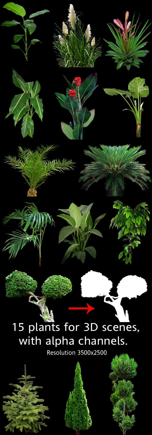 Plants for 3D scenes(part 2) - 3DOcean Item for Sale
