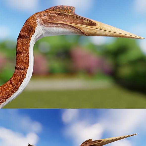 Quetzalcoatlus LowPoly 3D Model