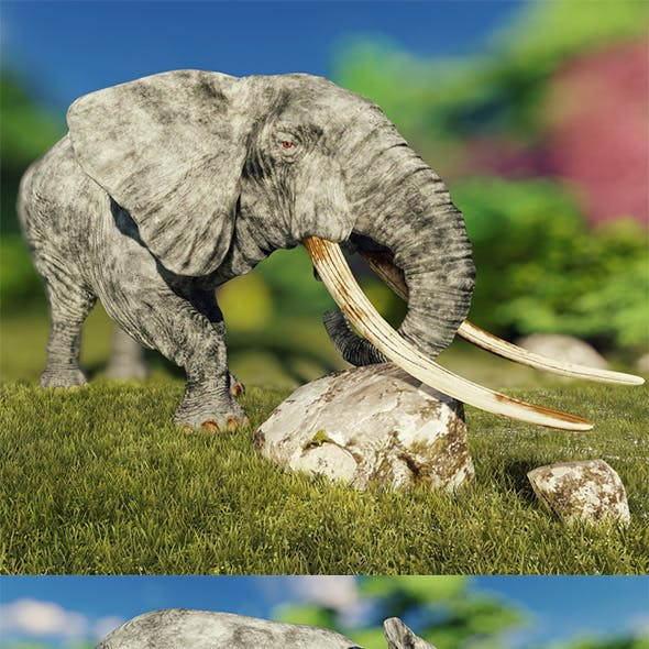 Elephant Game Ready Low Poly