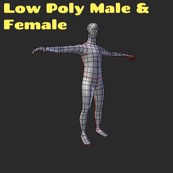 Low Poly Male & Female