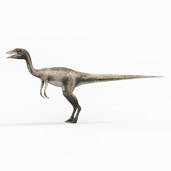 Compsognathus Dinosaur