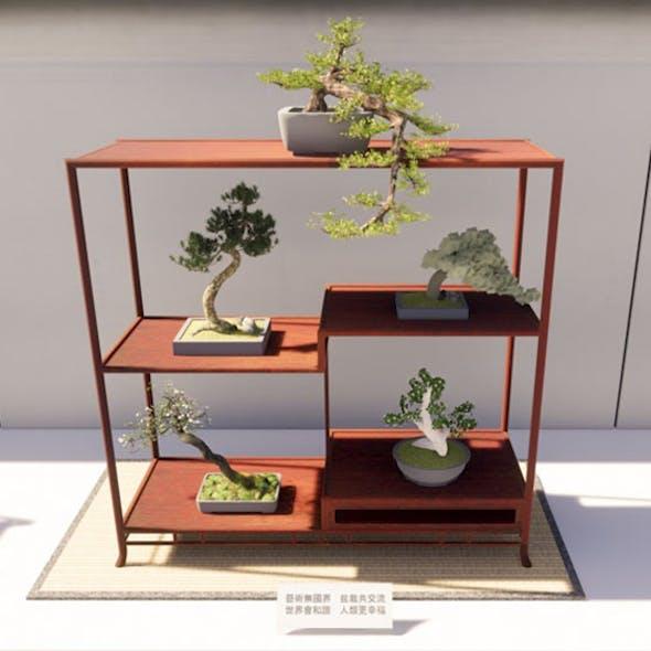 Bonsai Shelf 2