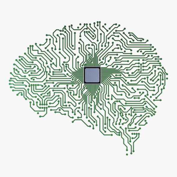 Electronic Circuit Board Brain v 1