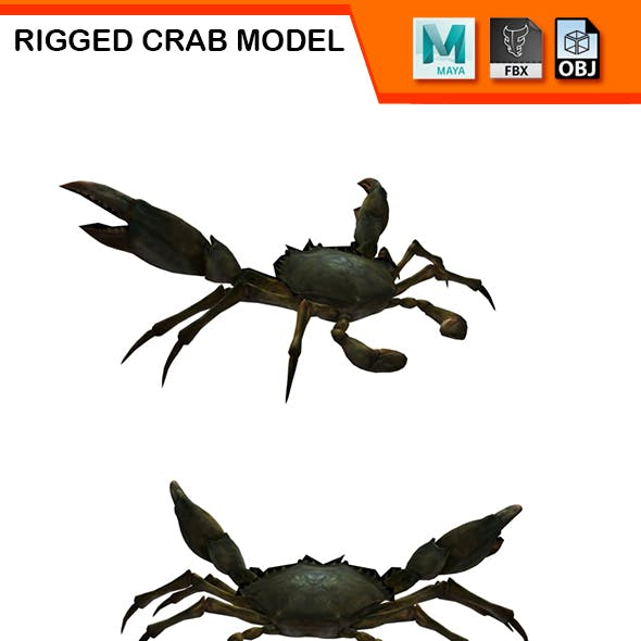 Rigged Crab Model