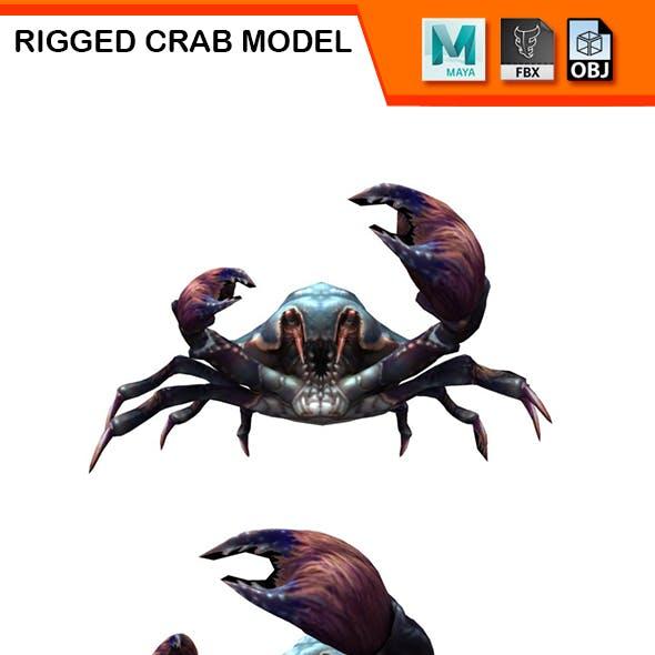 Rigged Crab Model 2