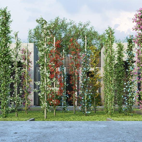 Vertical Garden 7 - 3DOcean Item for Sale