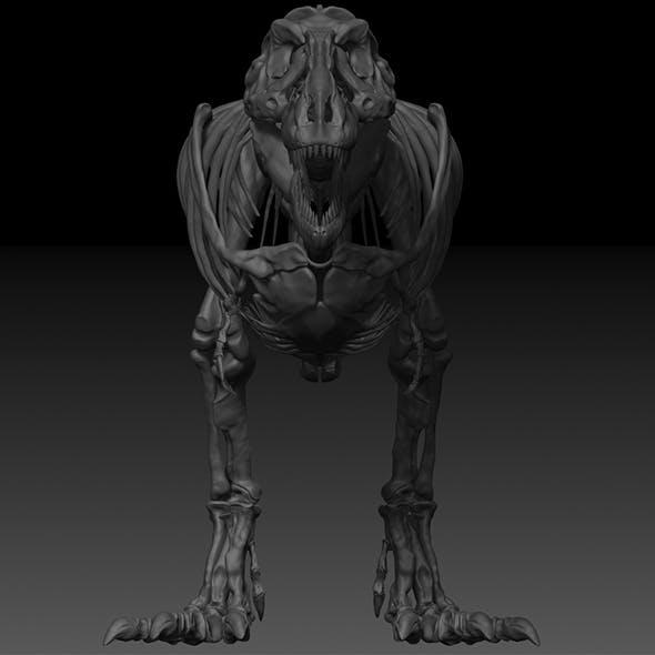 Adult Tyrannosaurus Rex Complete Skeletons - TREX Adult SUE - 3DOcean Item for Sale