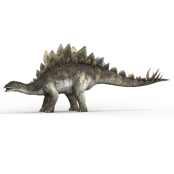 Stegosaurus Dinosaur - 3DOcean Item for Sale