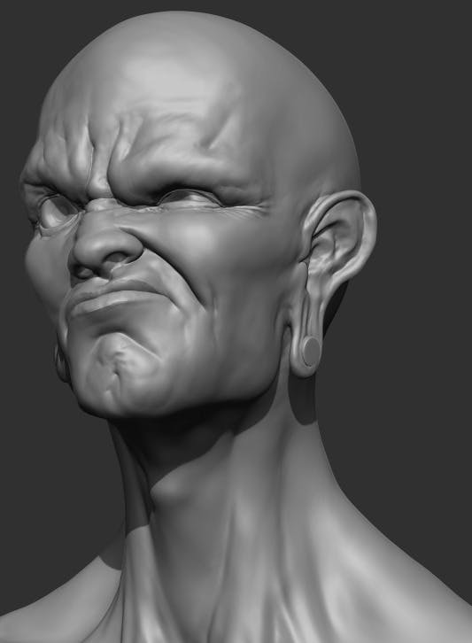 Angry Face Bust Sculpt - 3DOcean Item for Sale