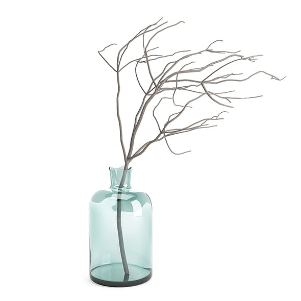 Glass vase with twigs