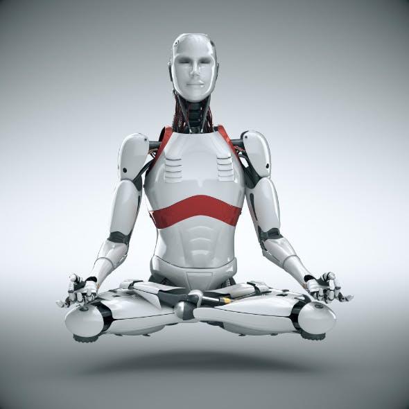 3D Robot Cyborg Humanoid