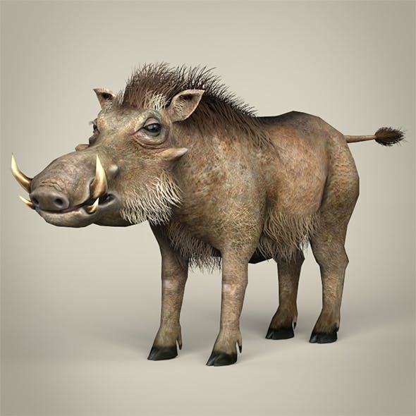 Low Poly Warthog