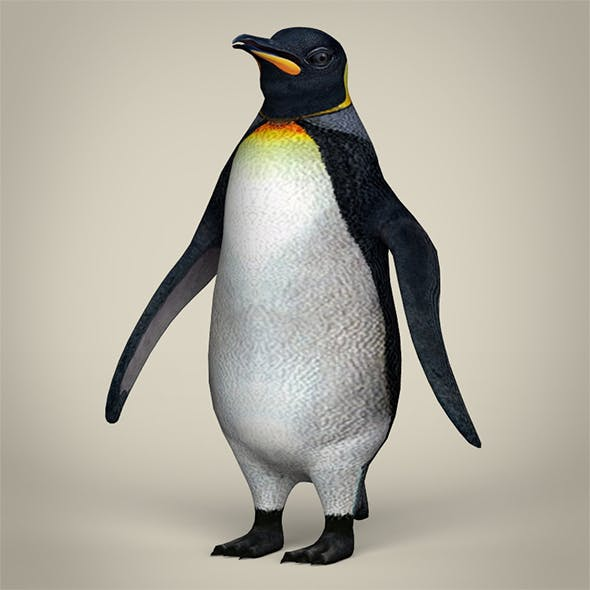Low Poly Penguin - 3DOcean Item for Sale