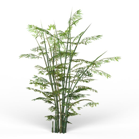 Game Ready Bamboo Tree 01 - 3DOcean Item for Sale