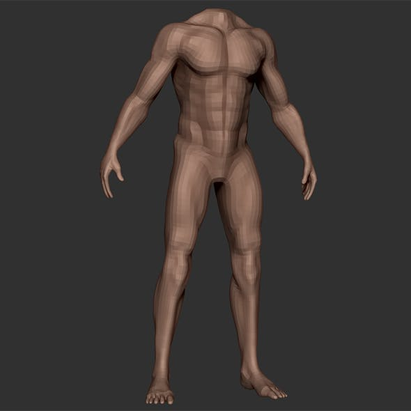 Man Body Anatomy Base Model Vol1