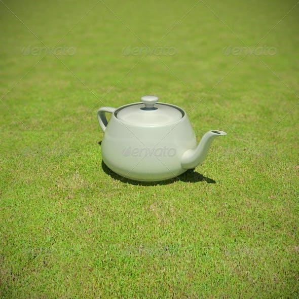 1433 - Grass Short Dry