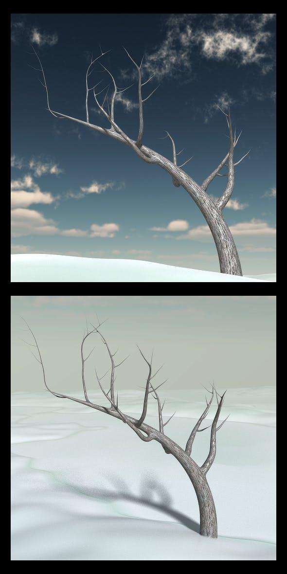 Creepy Winter Tree - 3DOcean Item for Sale