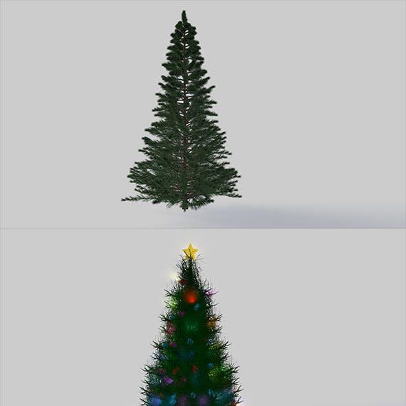 Two Christmas tree