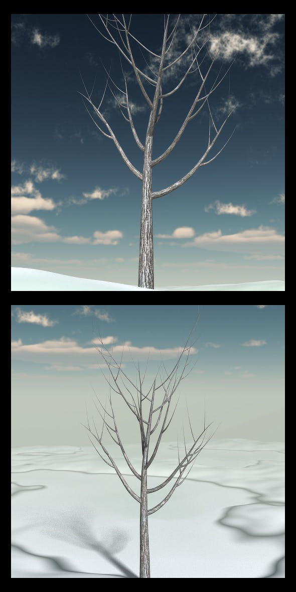Winter Tree 3 - 3DOcean Item for Sale