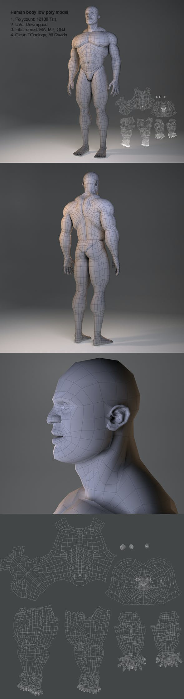 Low Poly Male Body Model - 3DOcean Item for Sale
