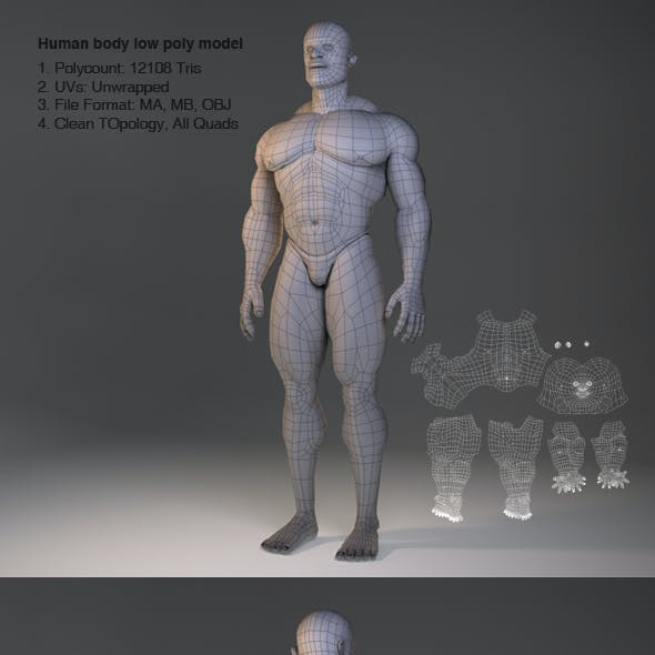 Low Poly Male Body Model
