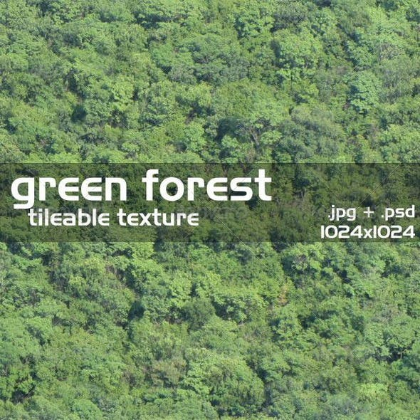 Green Forest Texture - 3DOcean Item for Sale