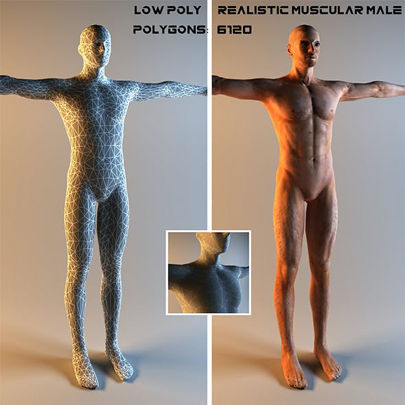 Realistic Muscular Male Low Poly 3D Model