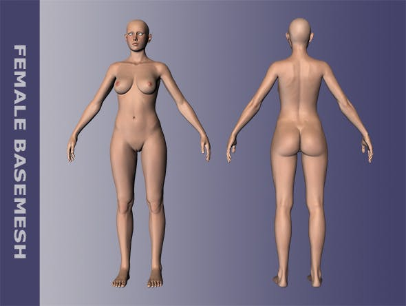 Female Body Basemesh - 3DOcean Item for Sale