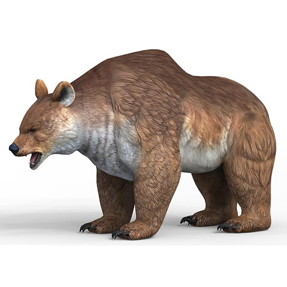 Fantasy Bear With PBR Textures