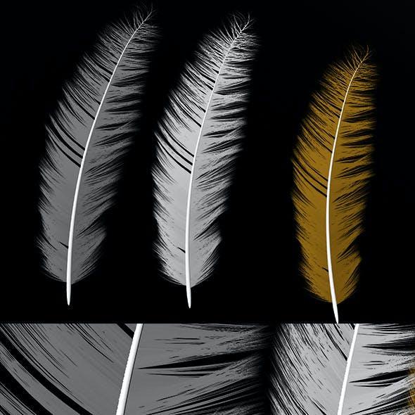 Three Feather