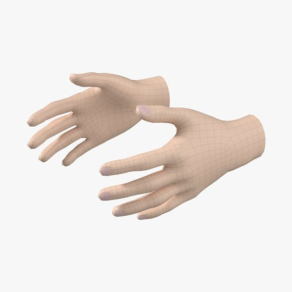 Female Hand Base Mesh 03