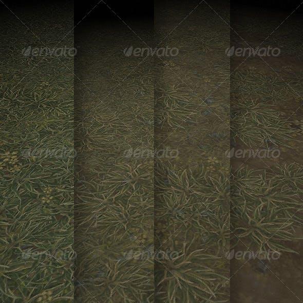 Grass Texture Tile 01